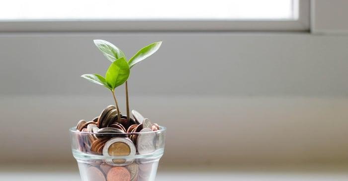 rahasta kasvaa verso